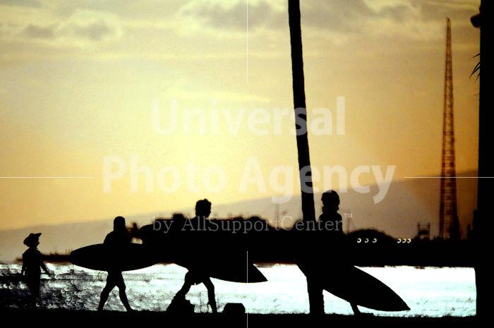 ハワイ ゴーサーフィン / ha01-2b