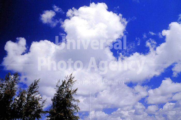 雲までアロハ! ピース! ハワイ(1) / ha01-8