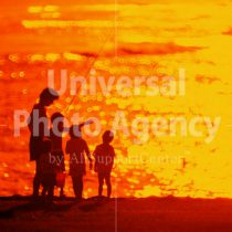 ハワイ オアフ アラモアナビーチパークの夕景 親子のシルエット / ha03-16