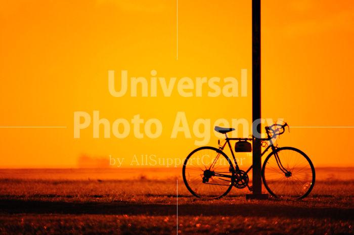 ハワイ オアフ 自転車シルエット / ha03-99