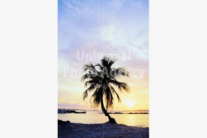 モルジブ ヴィンギリ島の夜明け / mj02-13