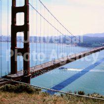 アメリカ サンフランシスコ ゴールデンゲートブリッジとねこ / sfcat01-103