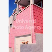アメリカ サンフランシスコ ピンクハウスと二匹のネコ / sfcat01-77